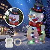 INFLATION Christmas Yard Sign with Stakes and String Lights,Xmas Holiday Winter Wonderland Snowman Yard Sign Outdoor Lawn Yar