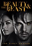 Beauty And The Beast (2012) - The First Season