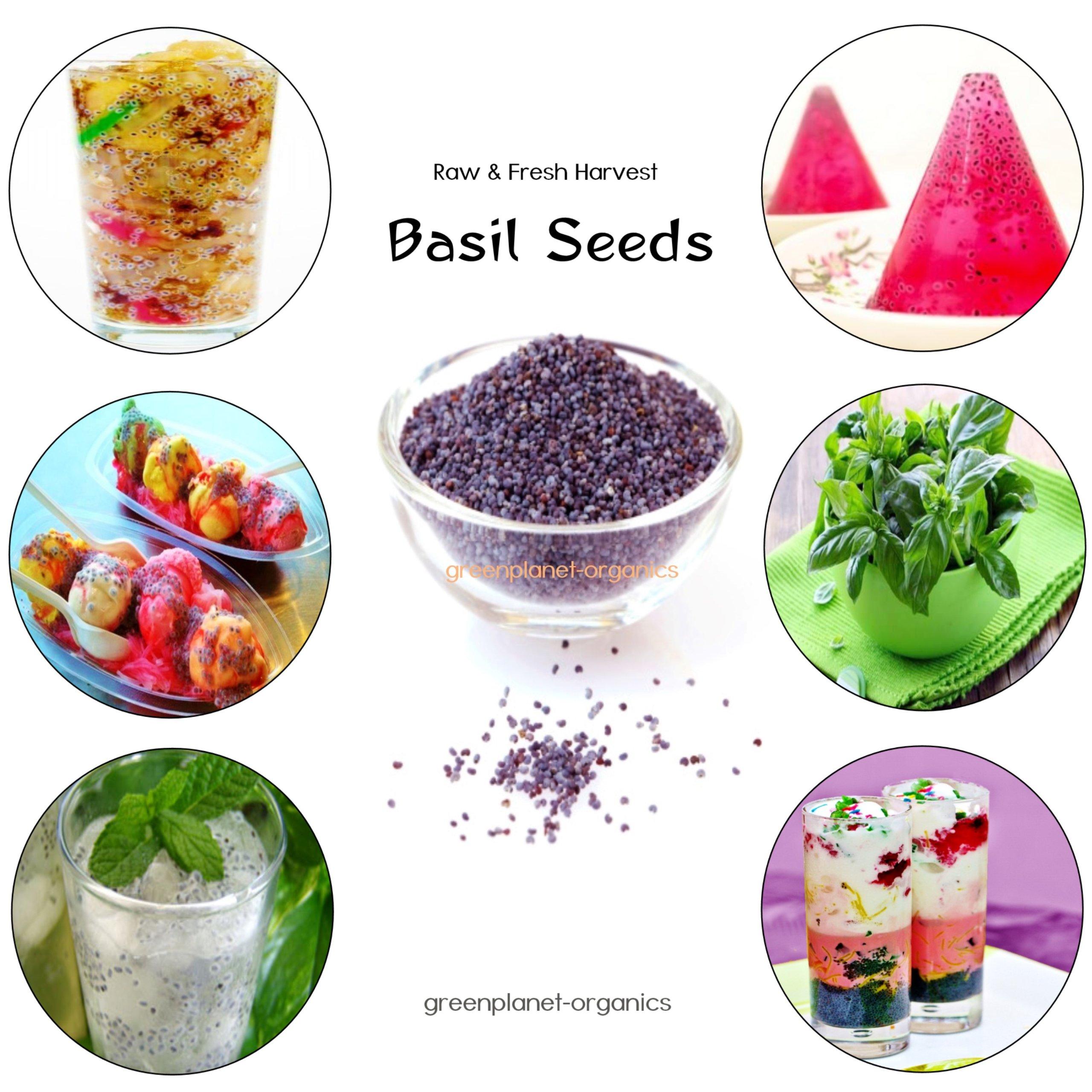 2 LBS Pure Basil Seeds (Raw & Fresh) Tulsi Seeds, Tukmaria, Tukh Balanga/Malanga, Sabja