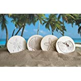 McCarter Coasters Mixed Shells Absorbent Drink Coasters Light Beige 4.25 inch Set of 4