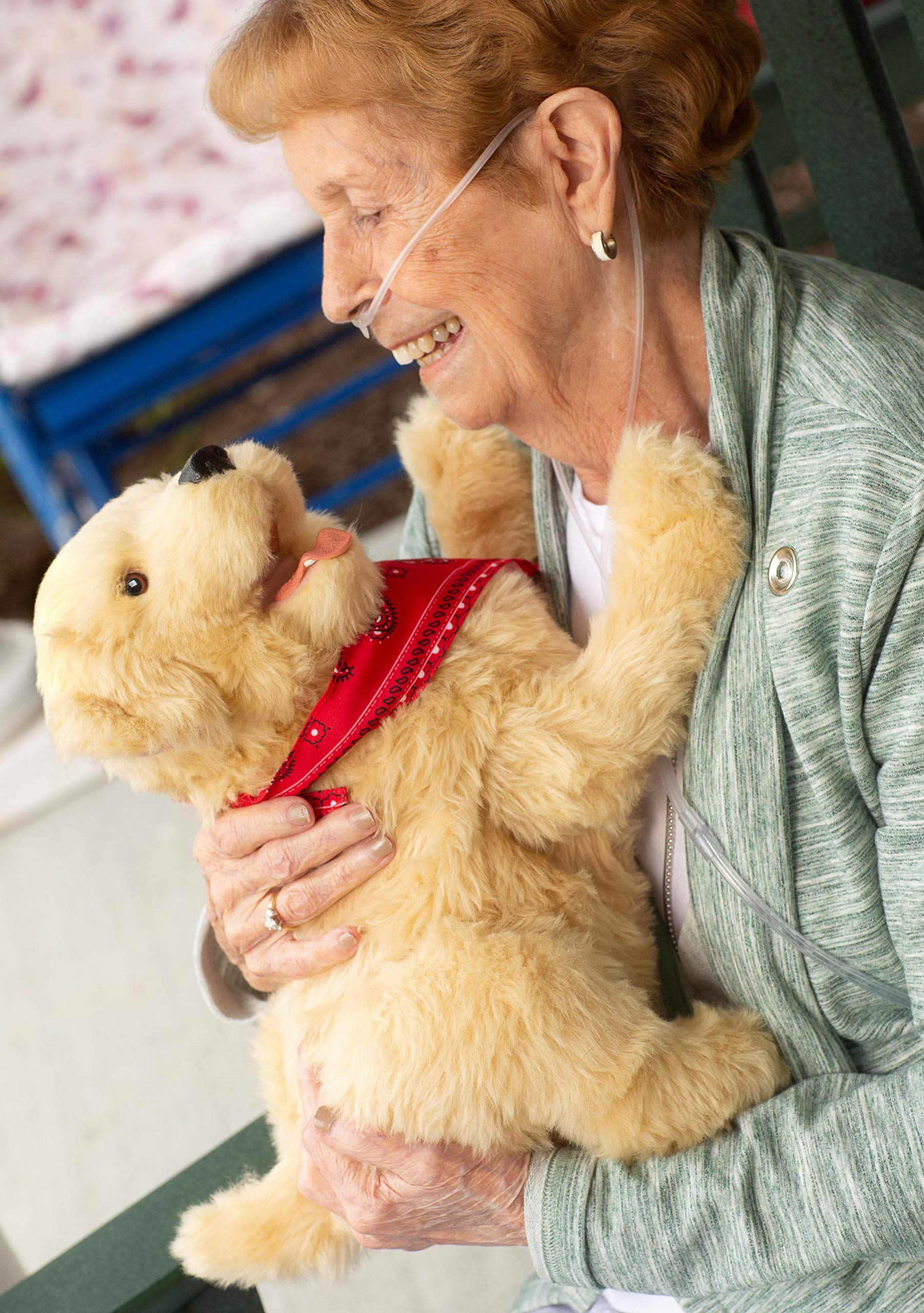 Ageless Innovation Joy For All Companion Pets Golden Pup Lifelike & Realistic by JOY FOR ALL