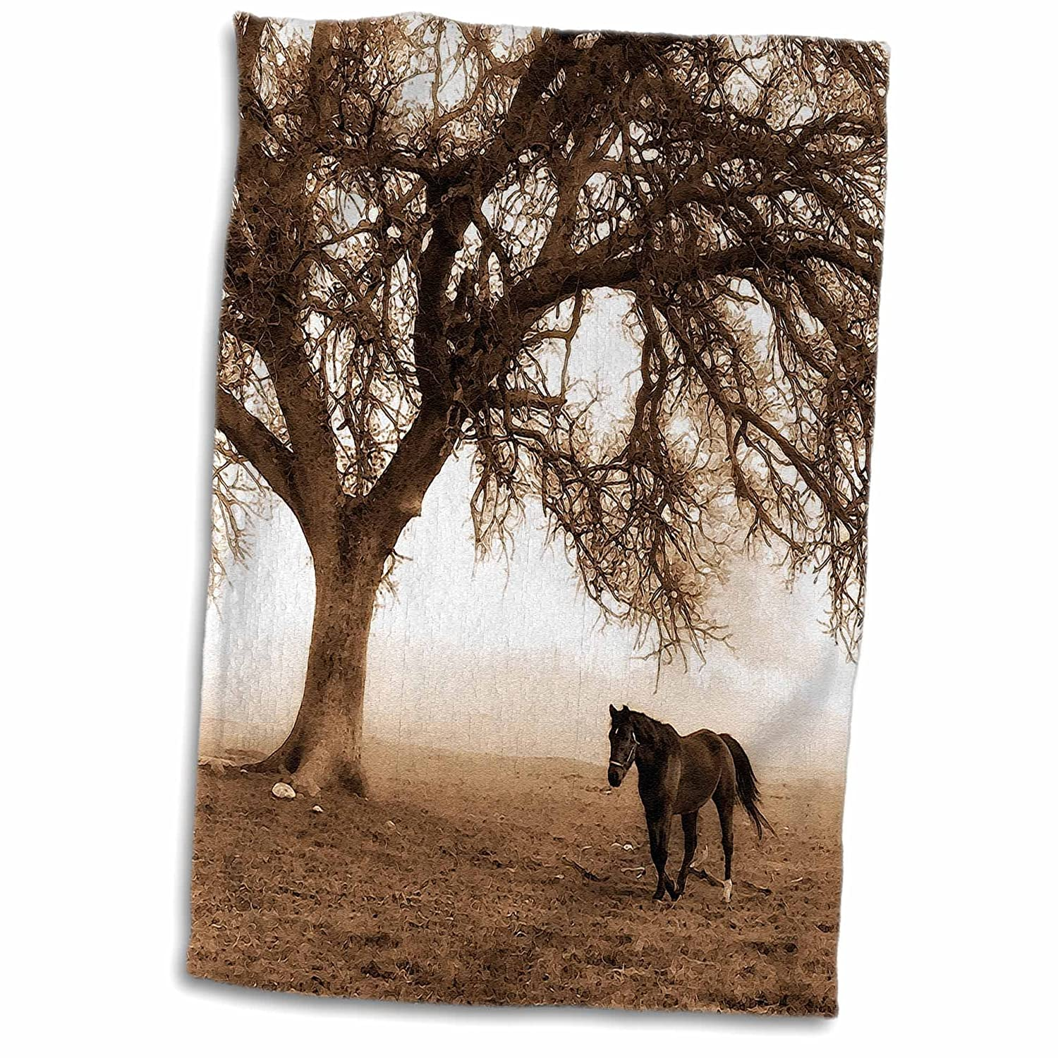 Multicolor 15 x 22 3D Rose Western Sepia Toned Horse on a Ranch with an Oak Tree TWL/_202972/_1 Towel