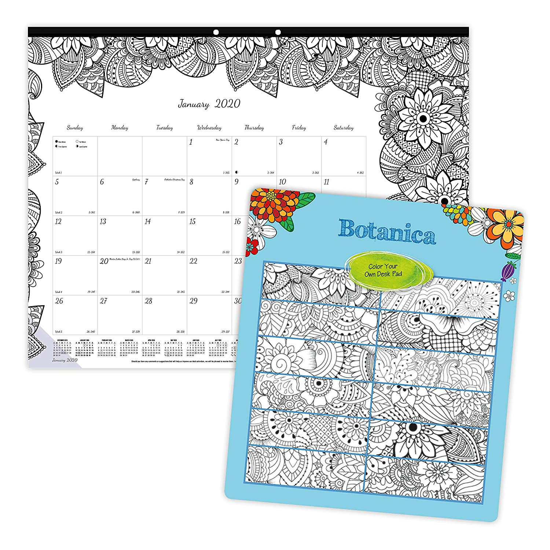Blueline 2020 DoodlePlan Monthly Coloring Desk Pad Calendar, January - December, Botanica Designs, 22 x 17 Inches (C2917311-20)