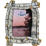 River's Edge Products Picture Frame 4in x 6in - Birchwood Tree