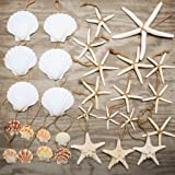 Hinterland Trading Nautical 30 Piece Nautical Christmas Ornament Decoration Set