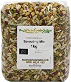 Buy Whole Foods Organic Sprouting Mix 1 Kg
