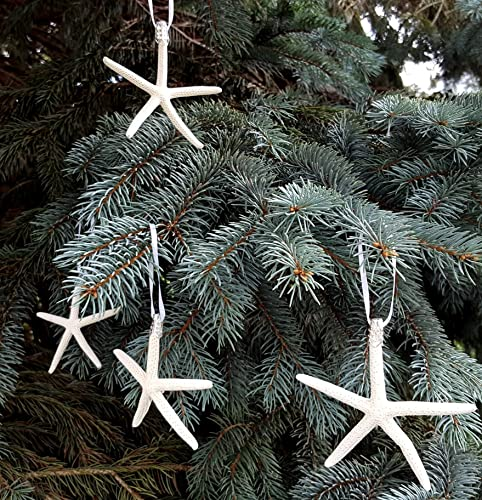 coastal nautical starfish christmas ornaments set of 4 beach white starfish holiday ornaments - Coastal Themed Christmas Decorations