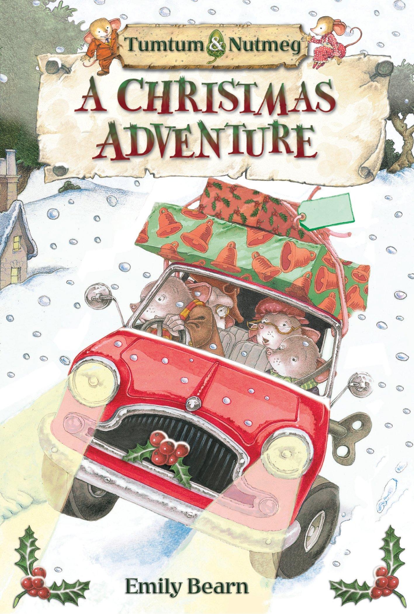 Tumtum & Nutmeg's Christmas Adventure: Emily Bearn: 9781405250269:  Amazon.com: Books