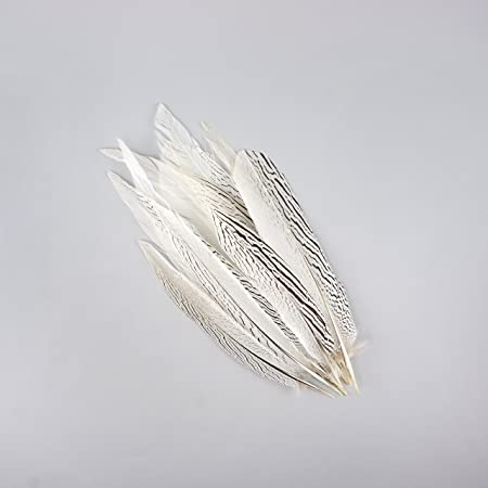 """Pheasant Tail Feathers 16/"""" Ivory Sold by the Piece 18/"""""""