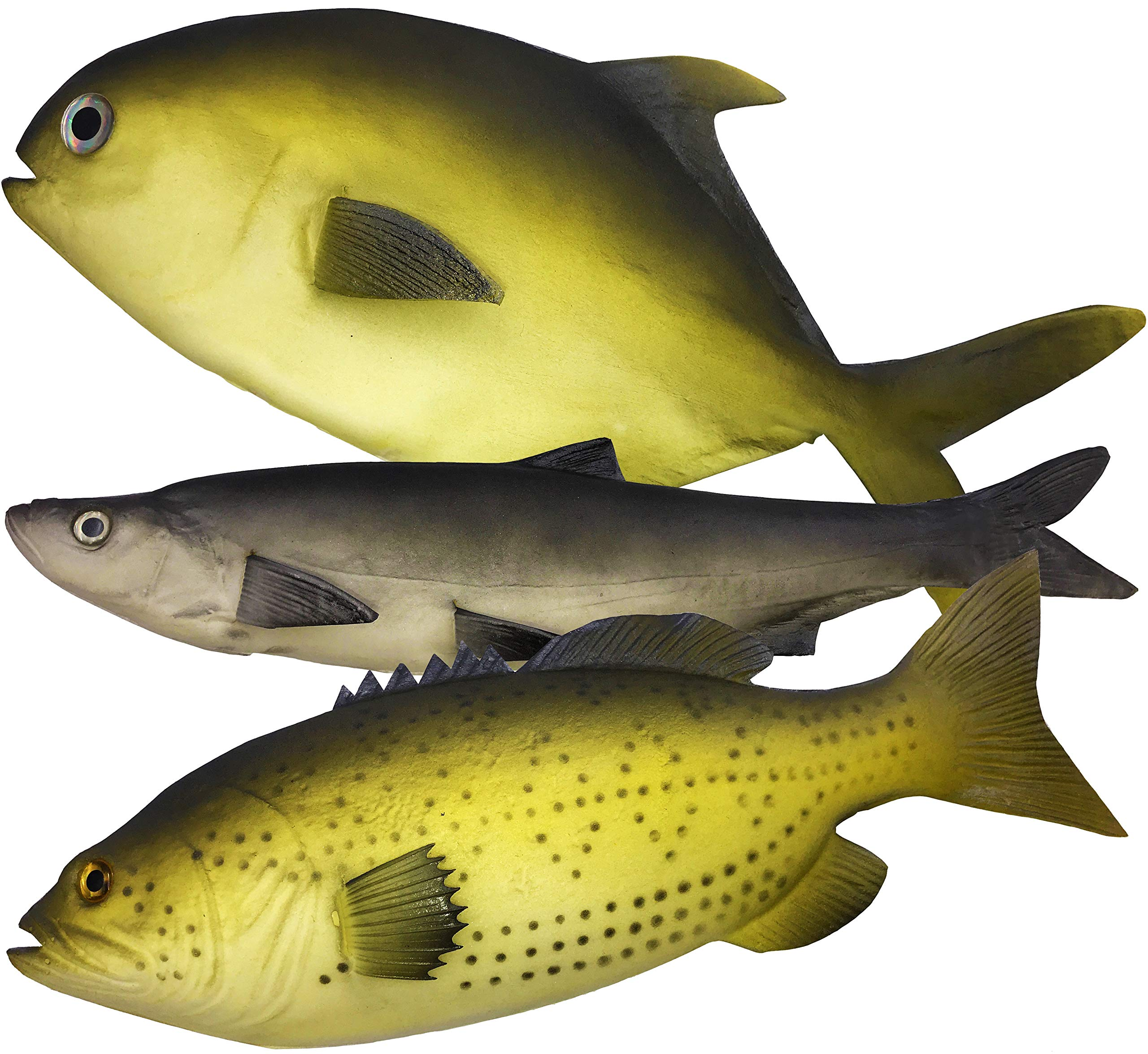3 Large Artificial Fish 2018- 12 to 16 in - Premium Quality - Realistic Fake Fish - Best Looking Real Fish Perfect for Food Display or Food Photography Prop - Flexible Foam Material