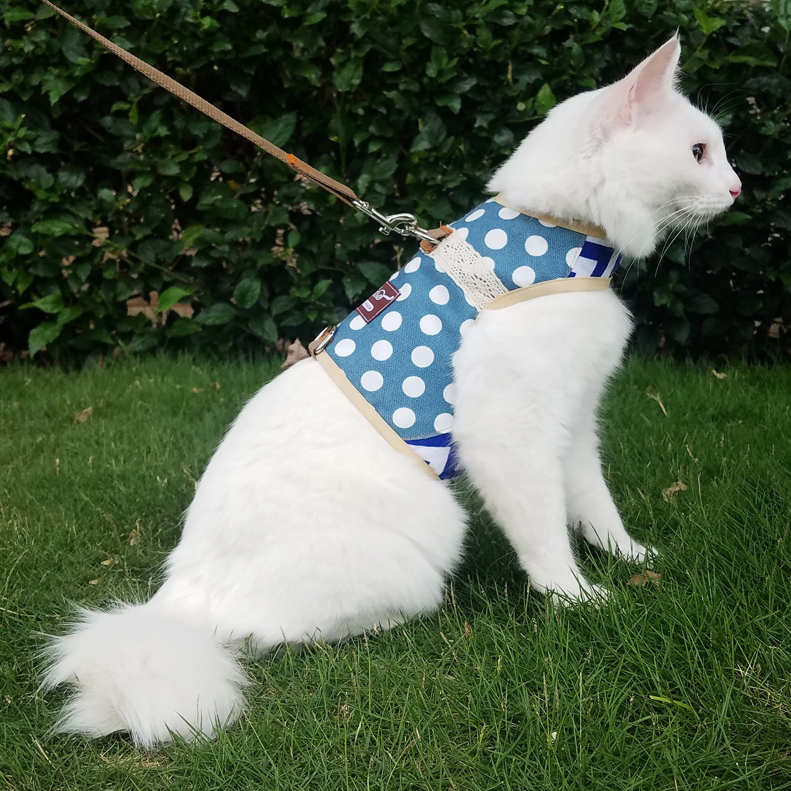Cat / Dog Walking Jackets Padded Vest Cat Harness and Leash Large, Cat/Dog Harness and Leash for Walking Escape Proof