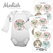 12 Monthly Baby Stickers, Floral Deer, Flower Antlers, Woodland, Baby Belly Stickers, Baby Month Stickers, First Year Stickers, Woodland Nursery Décor, Pink, Mint, Tan, Beige, Baby Girl