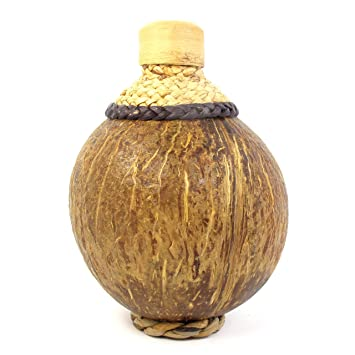 Coconut Shell Bottle With Lid Holds 60 ML Of Liquid