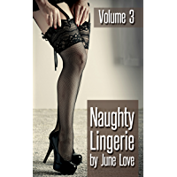 Naughty Lingerie: Volume 3 - Photo Book of Lingerie Photography book cover