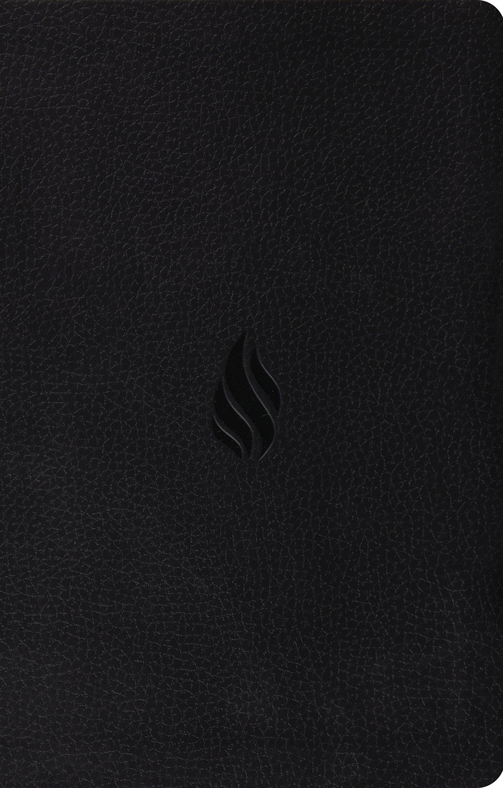 esv premium gift bible trutone midnight flame design
