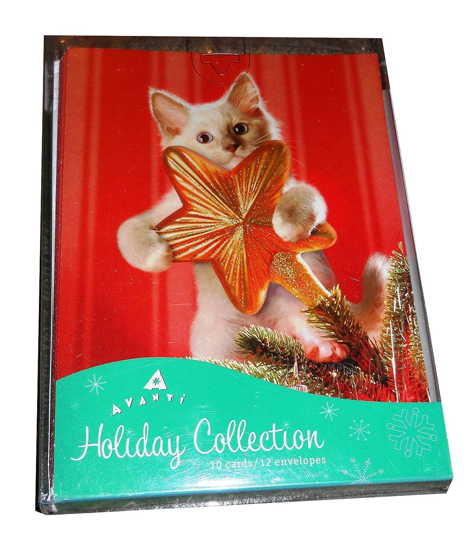 jumping fox boxed holiday greeting cards