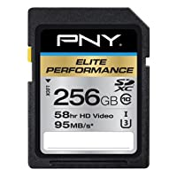 PNY Elite Performance 256 GB High Speed SDXC Class 10