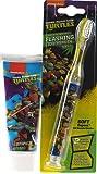 Teenage Mutant Ninja Turtles Battery Operated Toothbrush And Toothpaste