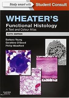 Junqueiras Basic Histology 14th Edition Pdf