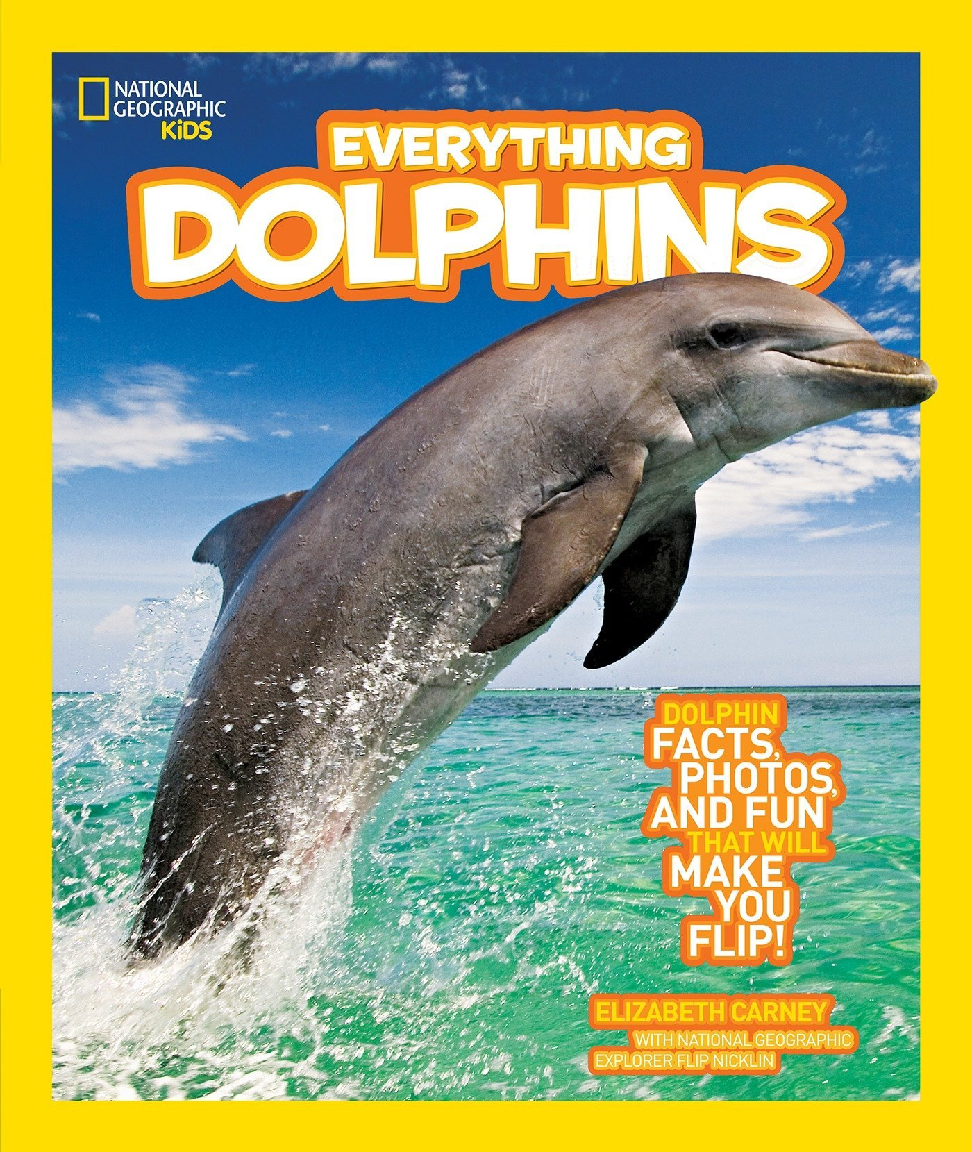 National Geographic Kids Everything Dolphins: Dolphin Facts, Photos, and Fun that Will Make You Flip ebook