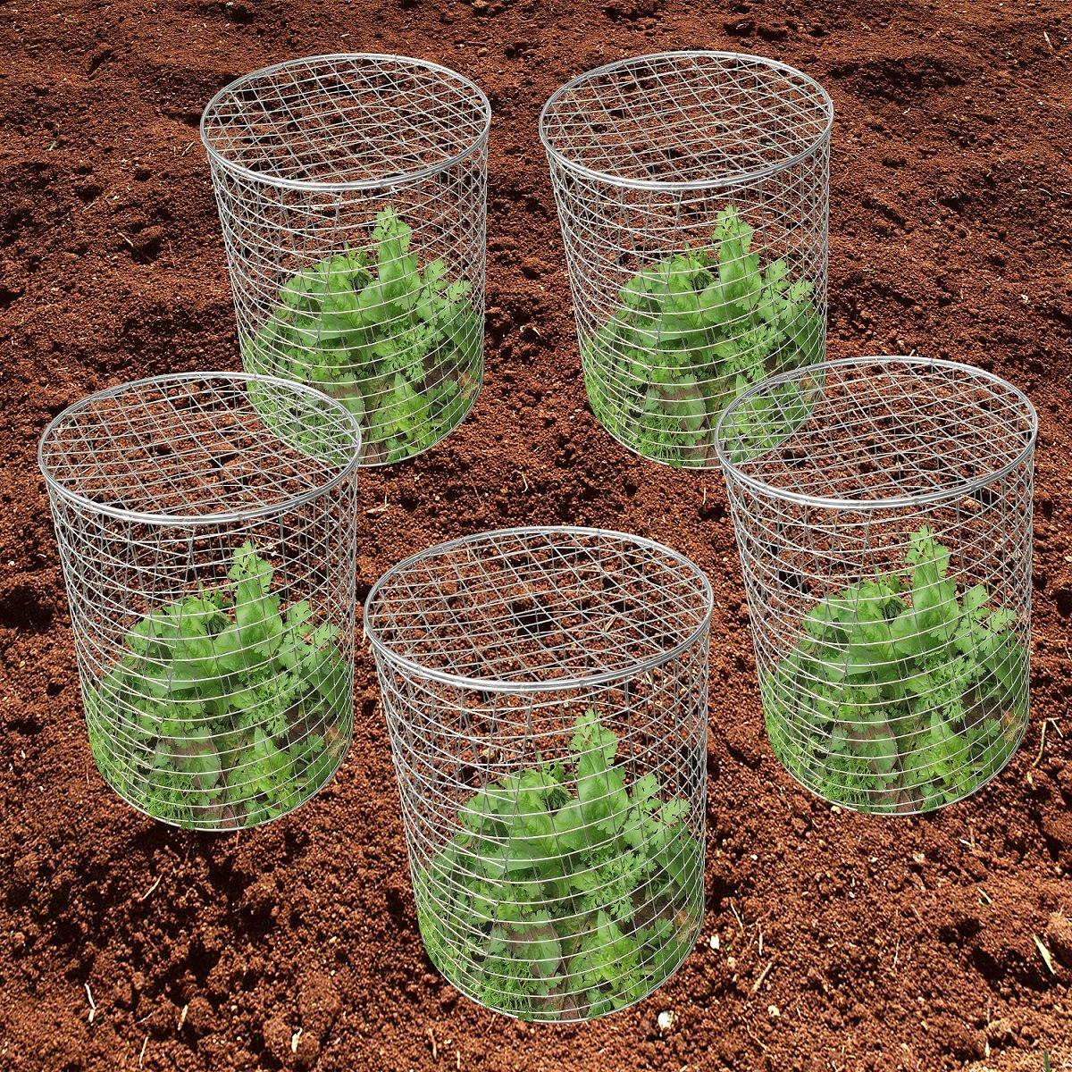 Amazon.com : Mr Garden ETA Stainless Steel Wire Barrier Mesh Basket ...