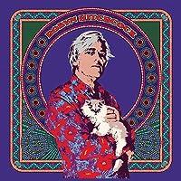 Robyn Hitchcock (Vinyl)