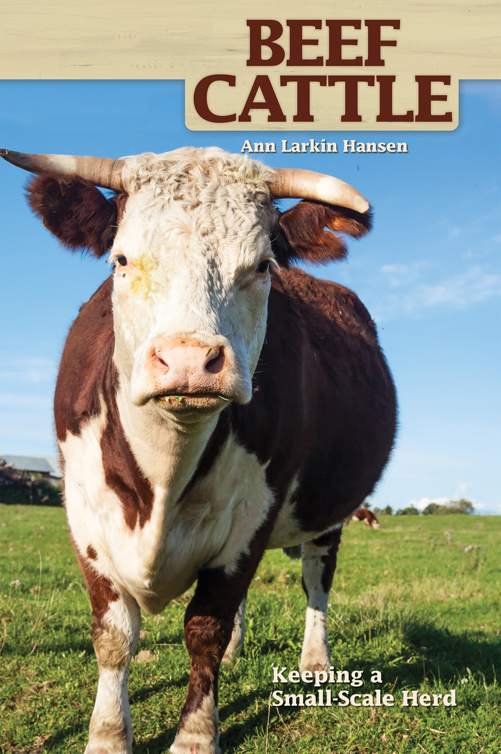 Beef Cattle: Keeping A Smallscale Herd For Pleasure And Profit (hobby  Farms): Ann Larkin Hansen: 9781931993685: Amazon: Books