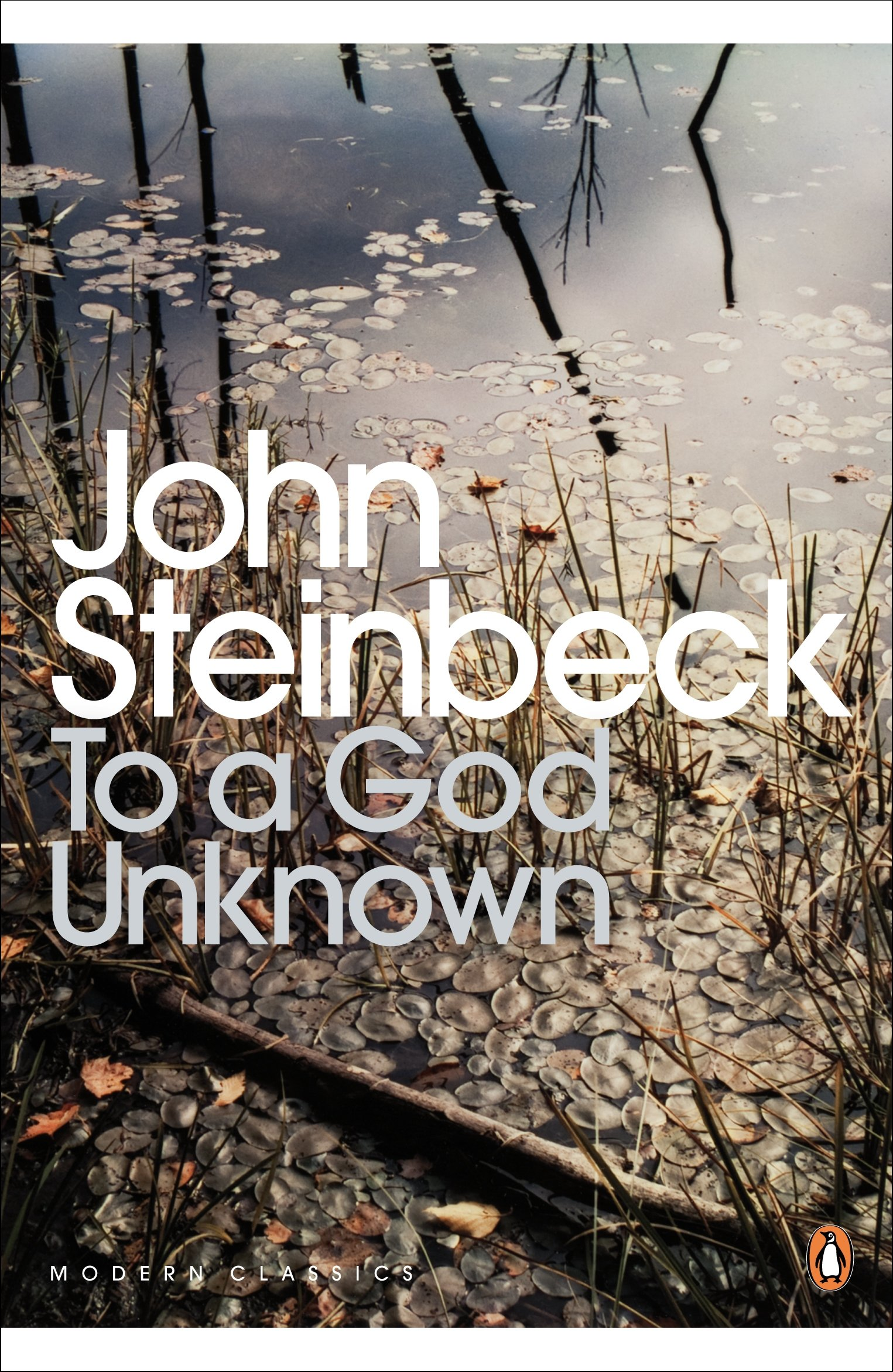 Download To a God Unknown (Penguin Modern Classics) pdf