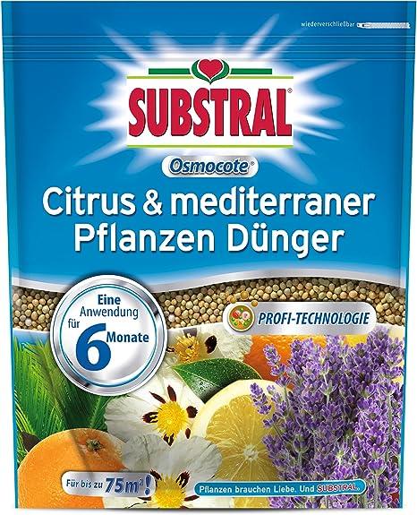 Substral Osmocote 1500 g Citrus /& méditerranéens plantes engrais