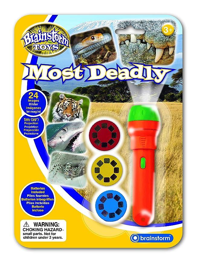 Brainstorm Toys E2038 - Linterna y proyector: Amazon.es: Juguetes ...