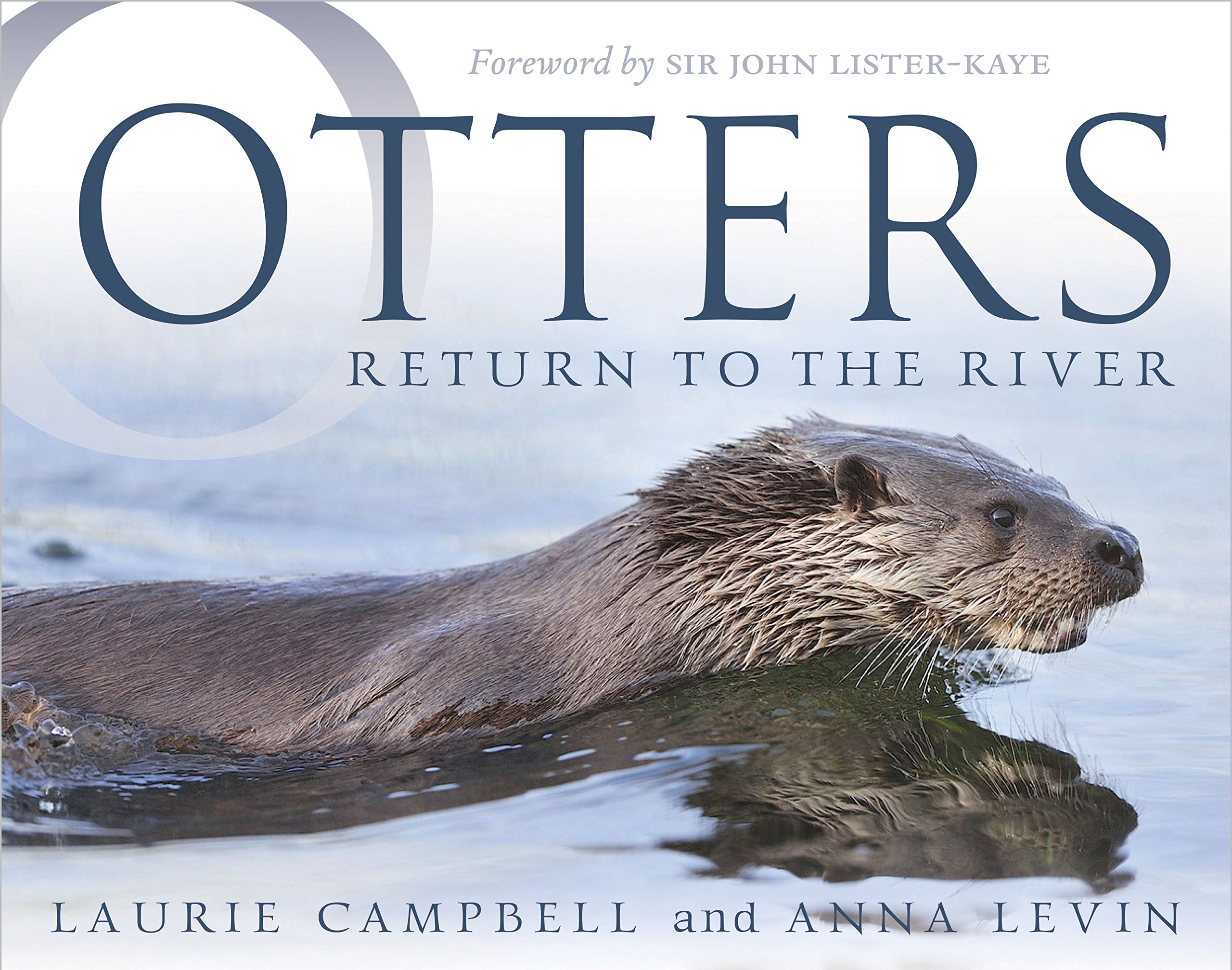 Otters: Return to the River pdf epub