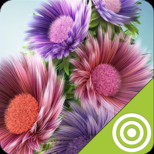 Best Flower Wallpapers HD
