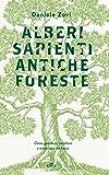 Alberi sapienti antiche foreste. Come guardare, ascoltare e avere cura del bosco. Con ebook