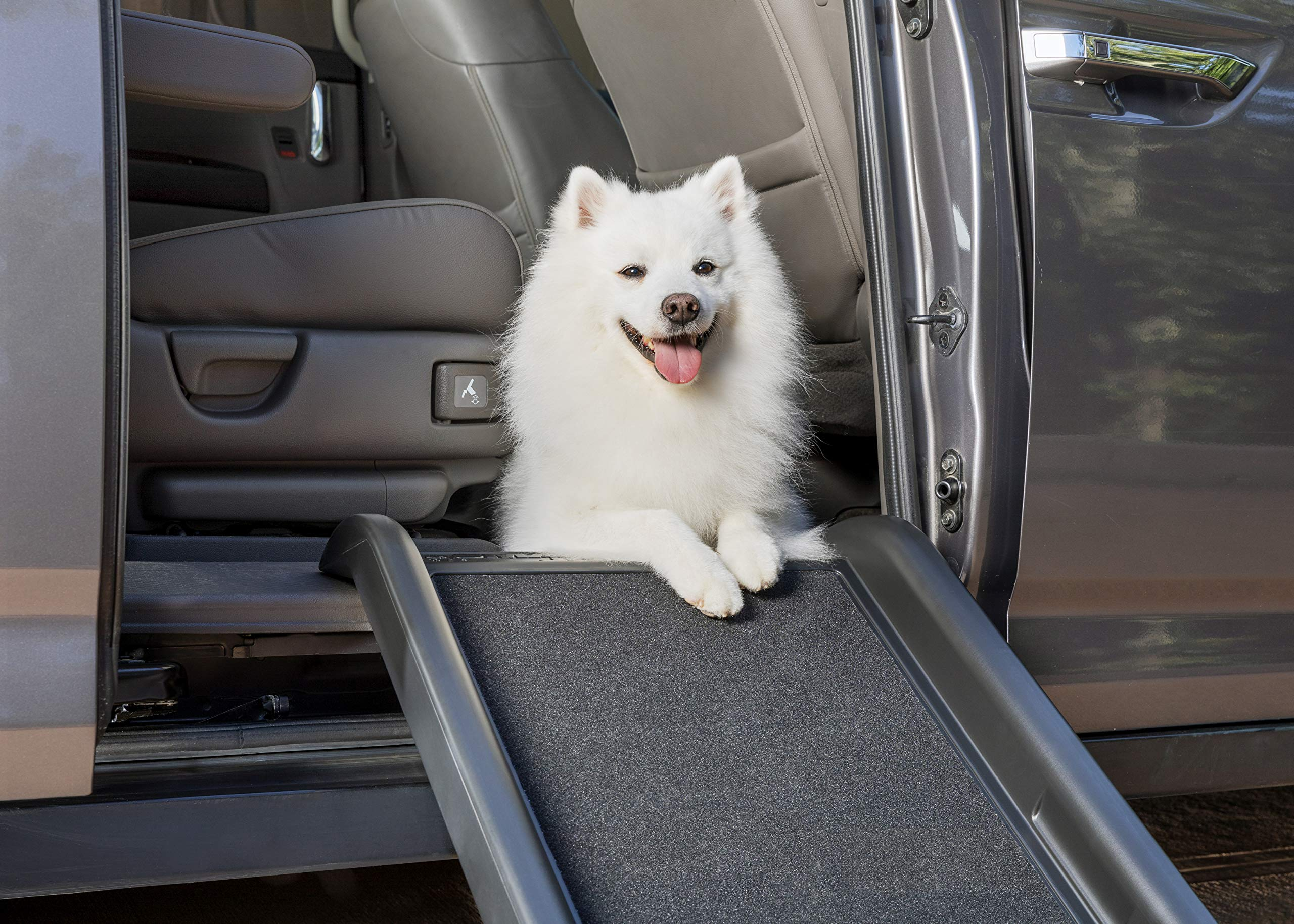 Mr. Herzher's Smart Ramp Junior by PetSafe