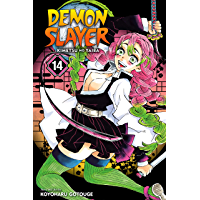 Demon Slayer: Kimetsu no Yaiba, Vol. 14: The Mu Of Muichiro book cover