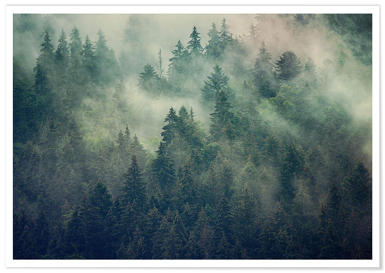 Panorama® Cuadro Cartón Pluma Bosque Brumoso 30 x 21 cm | Impreso en Cartón Pluma Cuadros Paisajes | Cuadros Decoración Salón | Cuadros para Dormitorio ...