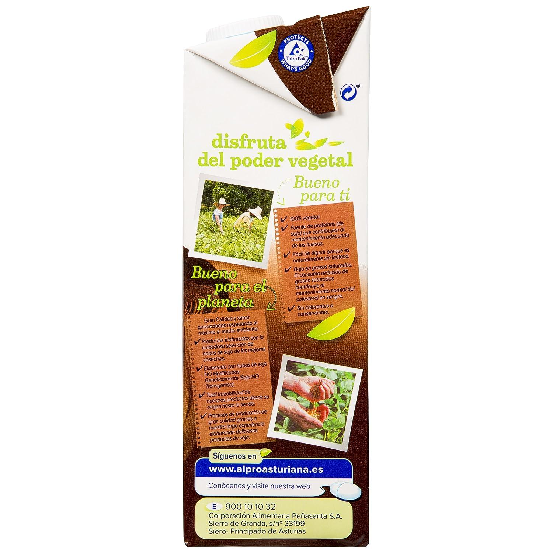 Alpro Central Lechera Asturiana Bebida de Almendra Chocolate - Paquete de 8 x 1000 ml - Total: 8000 ml