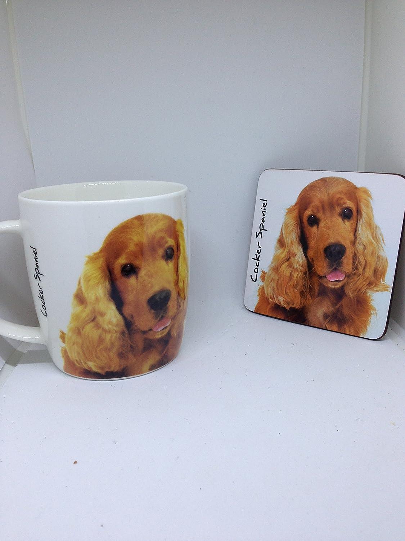Cocker Spaniel mug and coaster set RCPLTD