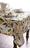 DII Rectangular Cotton Tablecloth for Spring