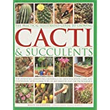 The Practical Illustrated Guide to Growing Cacti & Succulents: The Definitive Gardening Reference On Identification, Care And