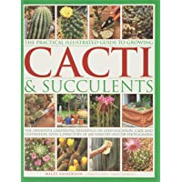 Practical Illustrated Guide to Growing Cacti & Succulents: The Definitive Gardening Reference on Identification, Care…