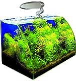 WAVE Box Vision 45 Cosmos Aquarium pour Aquariophilie