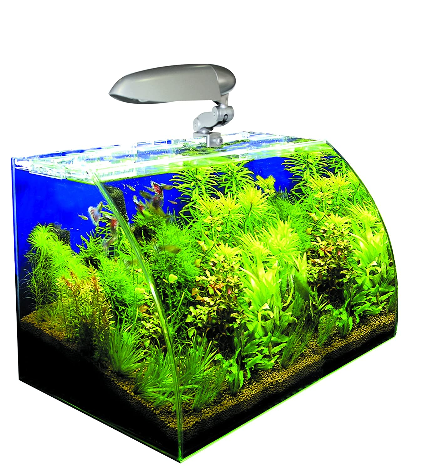 Wave Acquario Box Vision 45 Cosmo S Croci A2001557