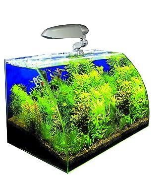 Wave Box Vision Cosmos - Acuario para acuariofilia: Amazon.es: Productos para mascotas