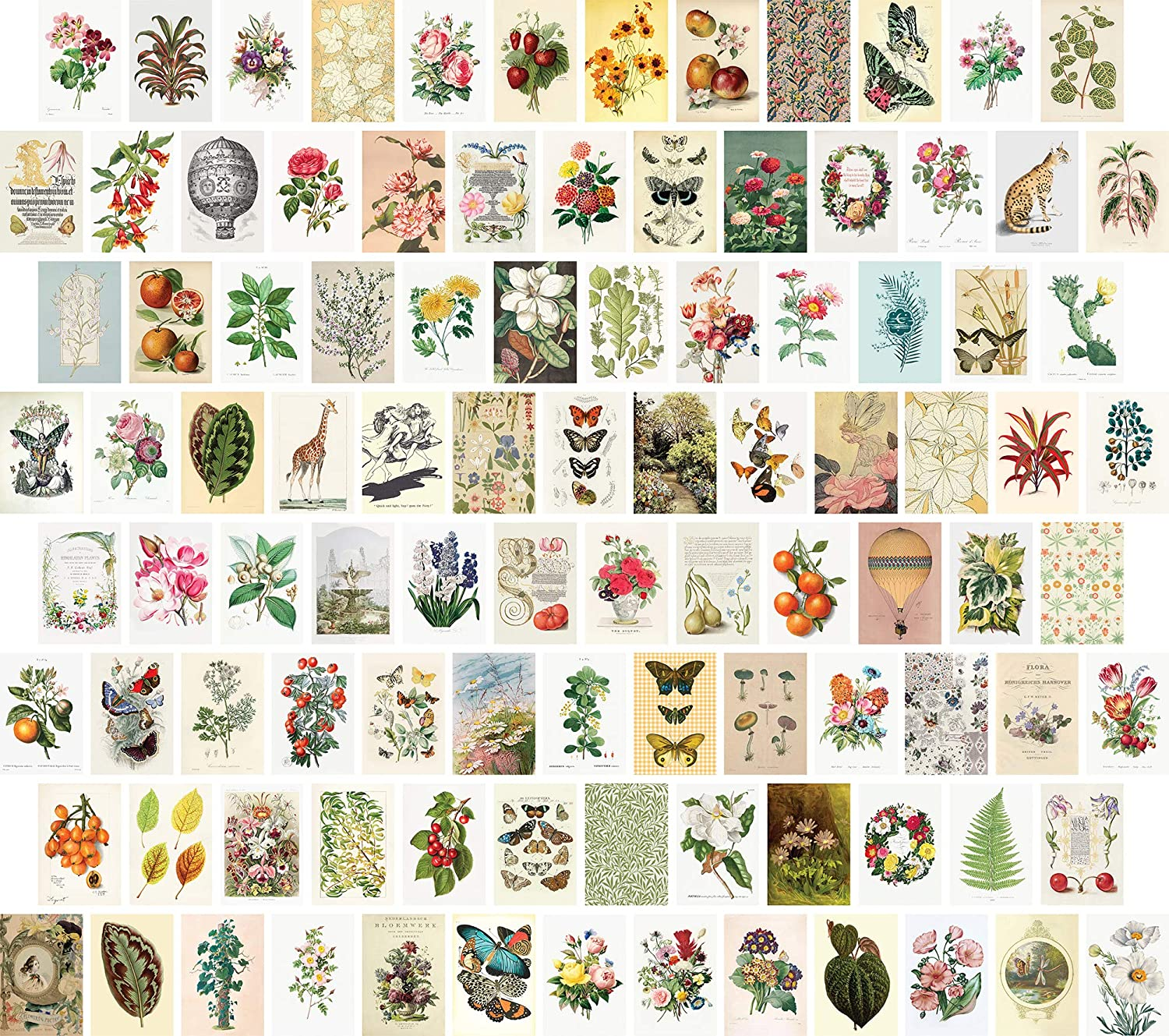 Artivo Wall Collage Kit Aesthetic Pictures, Vintage Wall Collage Kit, Bedroom Decor for Teen Girls, Botanical Nature Collage Kit for Wall Aesthetic Posters, 100 Set 4x6 inch, Photo Collection