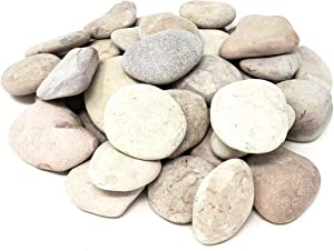 Capcouriers Garden Rocks - Landscaping Rocks for Garden and Landscape Design - 5 Pounds (About 27 Rocks)