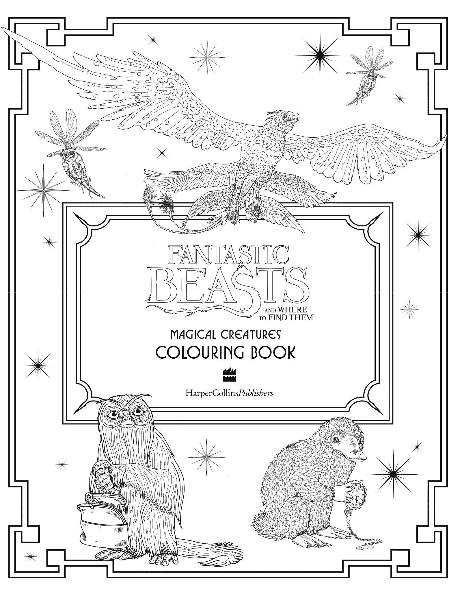 Les Animaux Fantastiques Livre De Coloriage Des Créatures Magiques