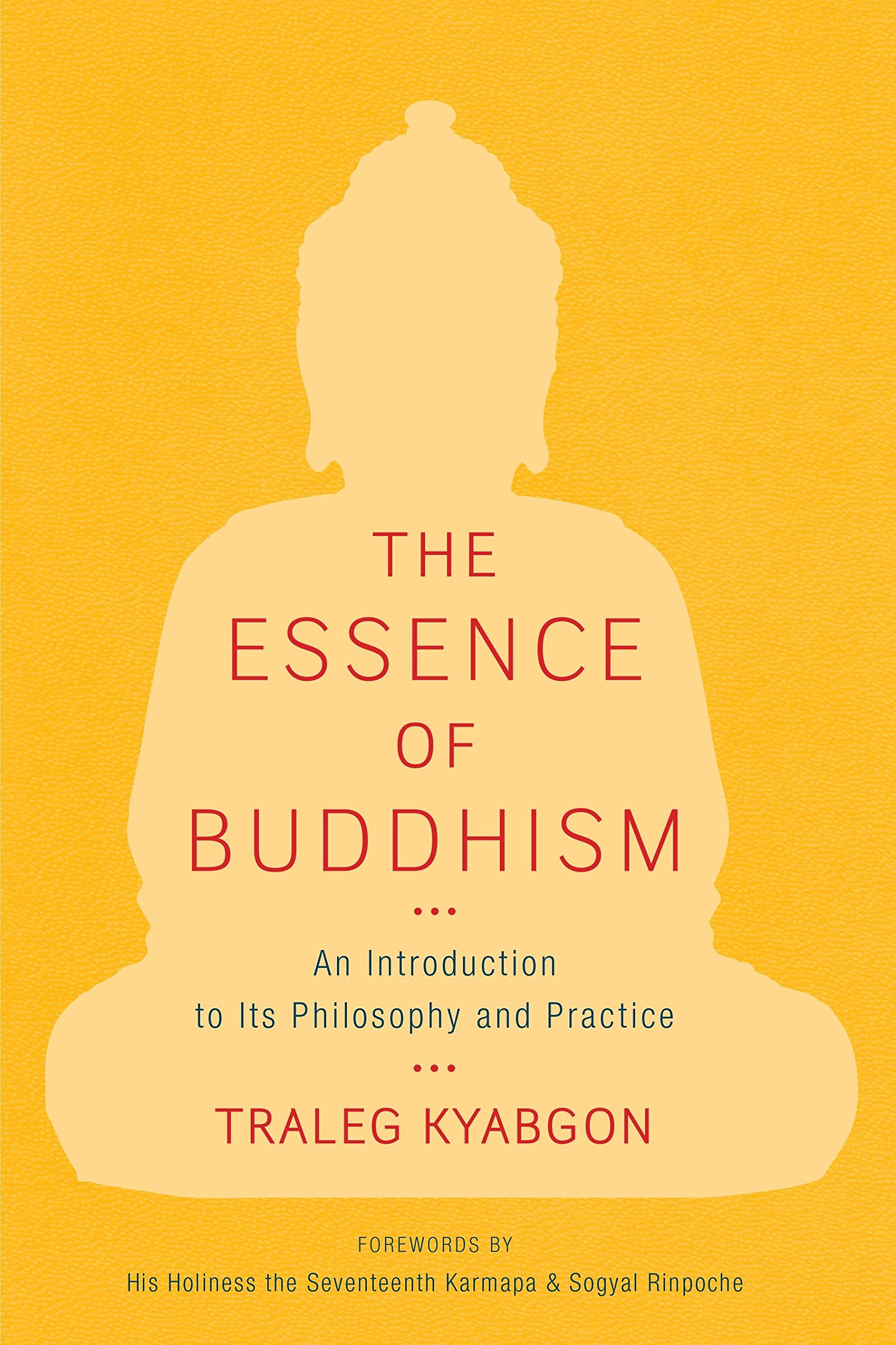 Download The Essence of Buddhism: An Introduction to Its Philosophy and Practice (Shambhala Dragon Editions) ebook