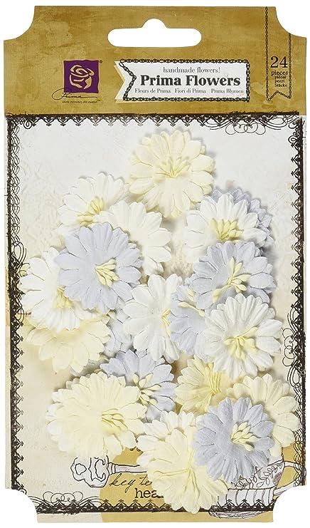 Amazon Prima Marketing Frost Paper Flowers Canson 1 1 24pkg