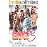 BIG 3: A REVERSE HAREM STEPBROTHER ROMANCE